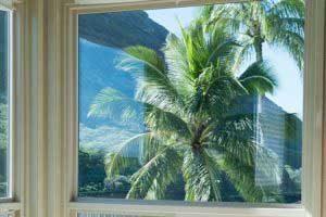 Interior-View-New-Windows